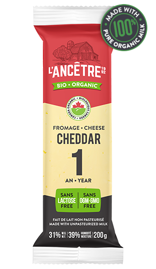 1yearold cheddar  certified organic  fromagerie l'ancêtre